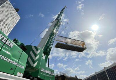 Crane in Sun